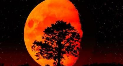 eclipsa-de-luna-2014-680x365