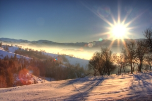 soarele-de-iarna_d3362090ec67b5